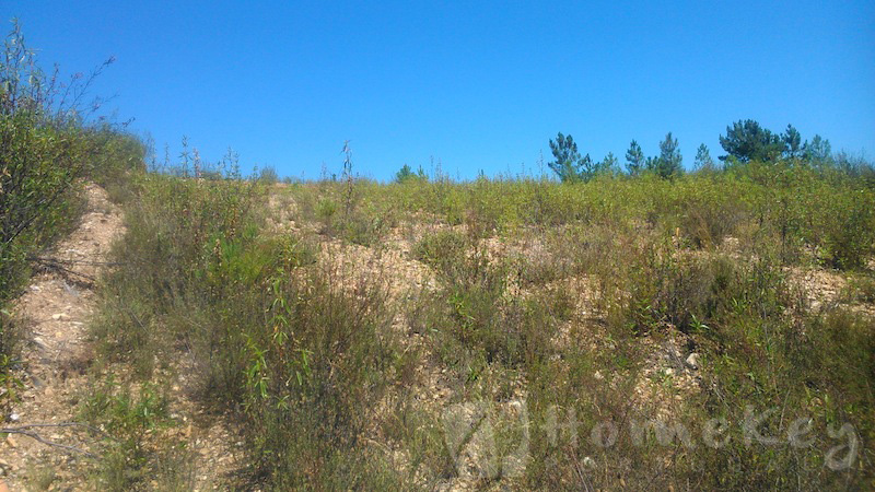 building plot for sale central portugal